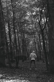 Alone in the forest V.