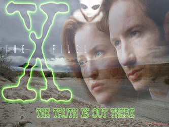 The X Files Wall by morpheusvip