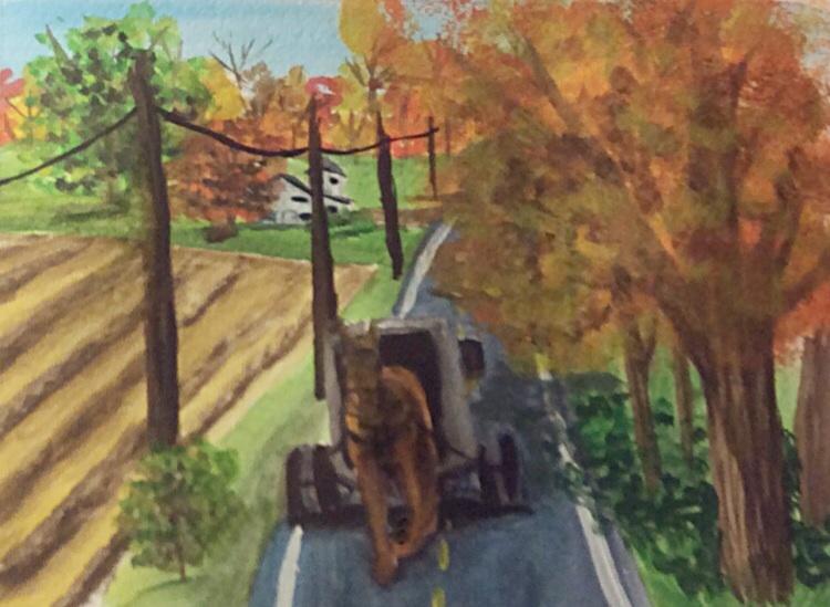 Amish farm by greenstables
