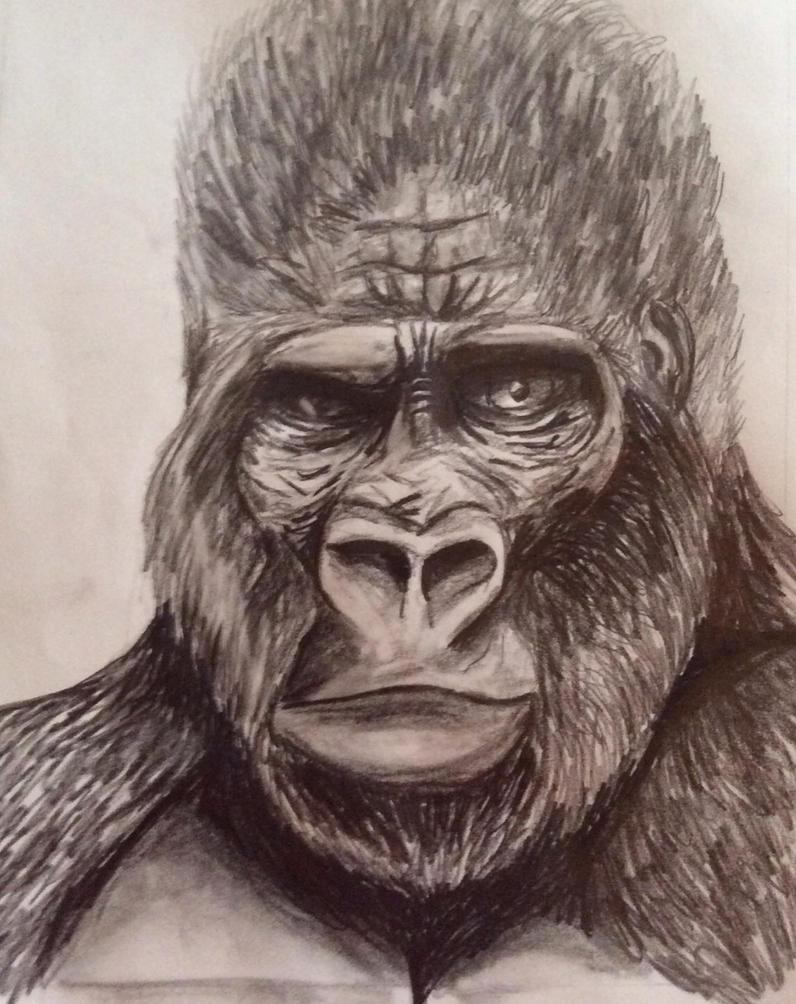 gorilla by greenstables