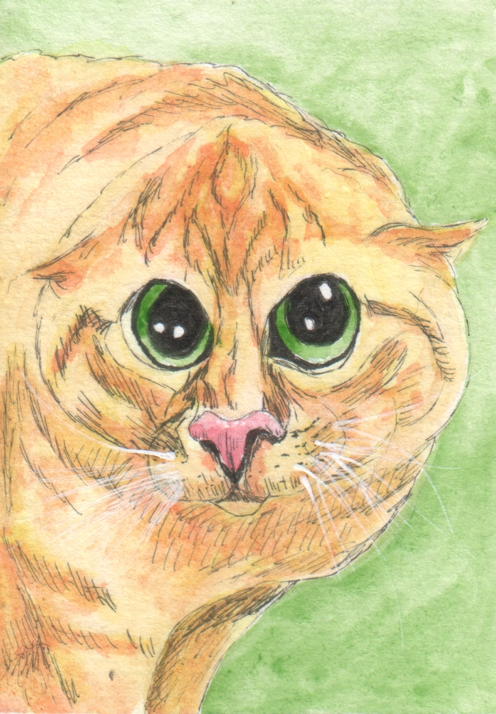 [Image: kitteh_aceo_by_punk_a_cat-d8wx5ct.jpg]
