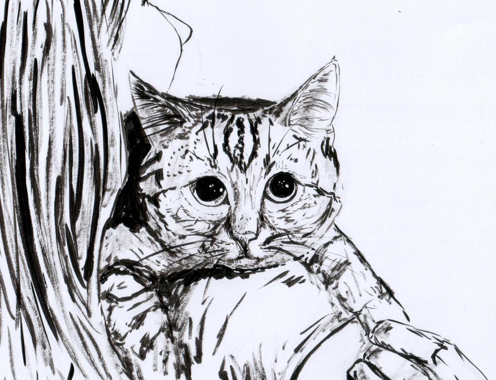 [Image: tumblr_gets_drawn_7_by_punk_a_cat-d9778ez.jpg]