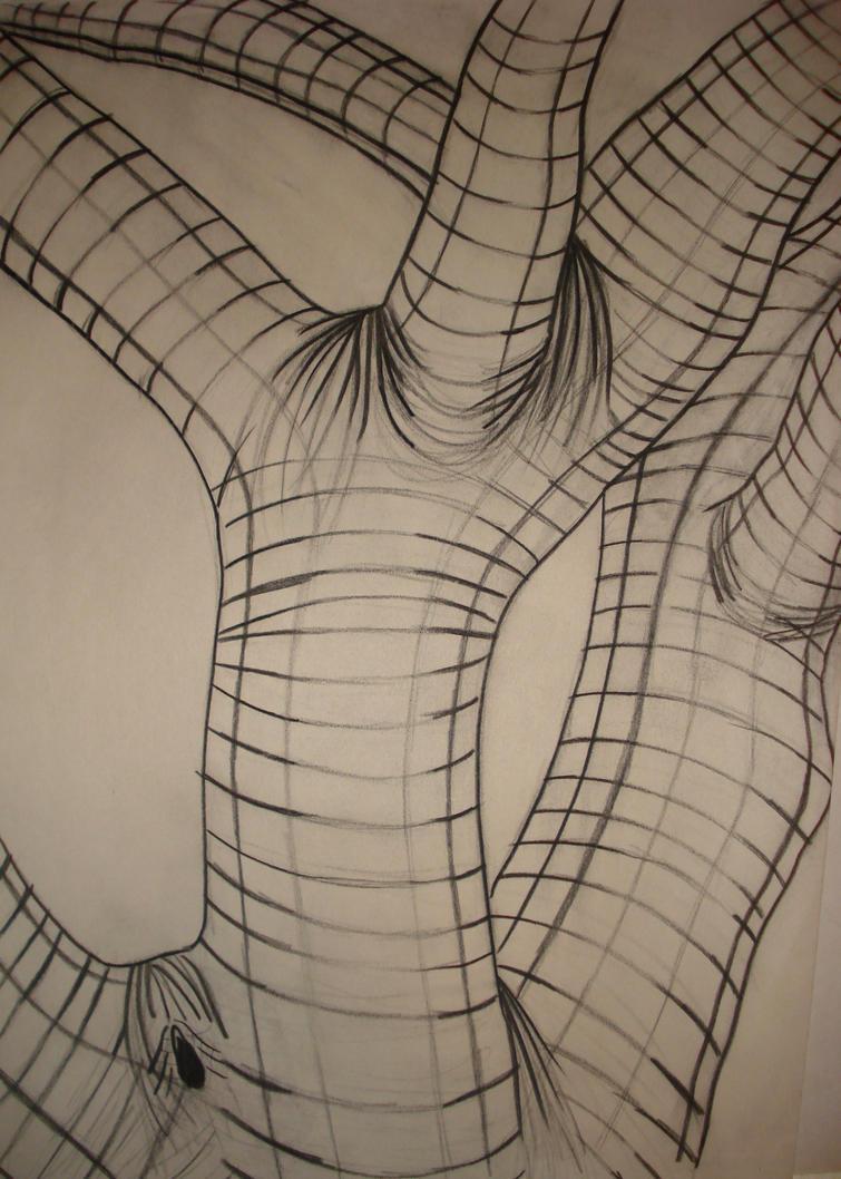 Contour Line Drawing Tree : Cross contour by adrilophosaurus on deviantart