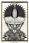 Ace Of Cups Tarot Original