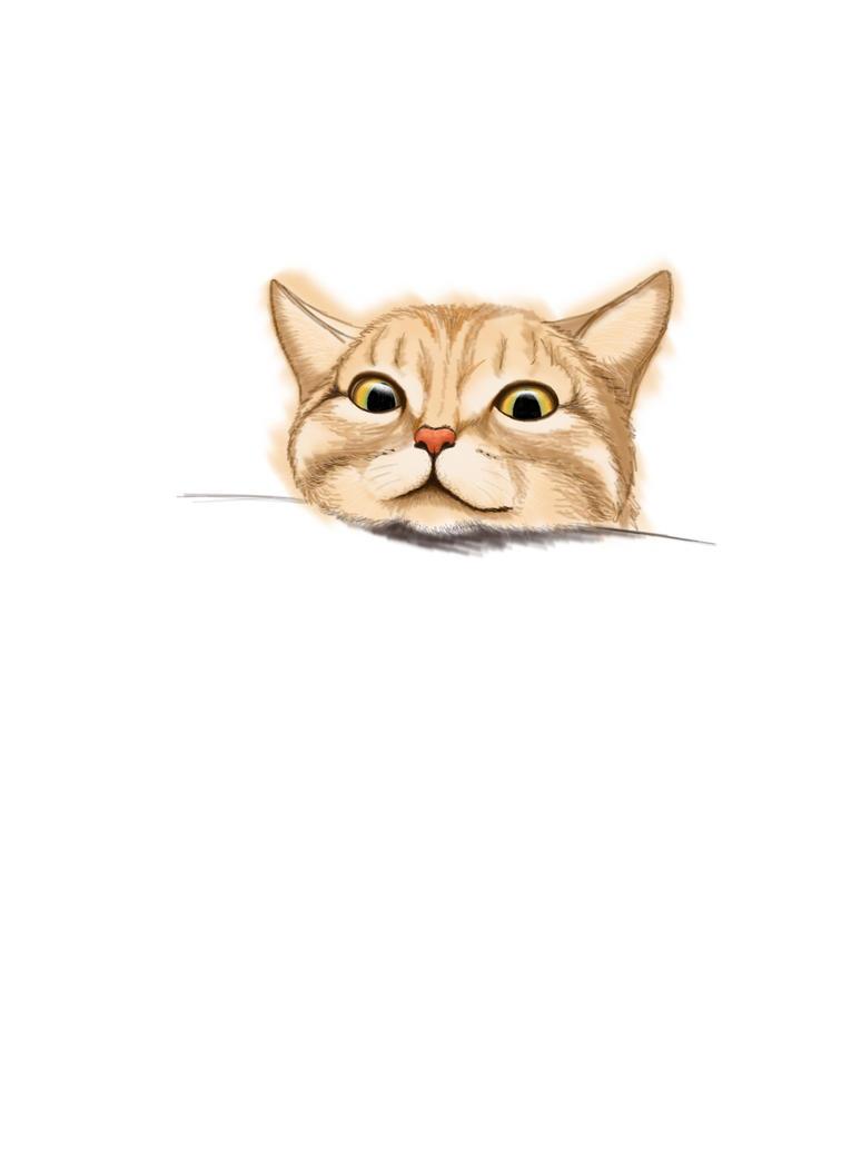 CAT by Joilka