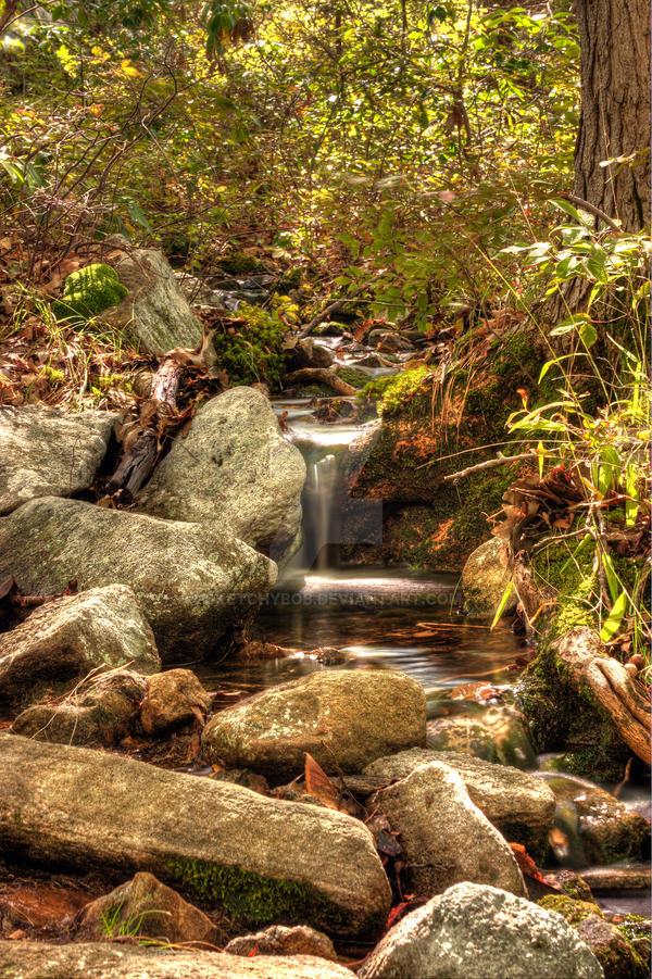 Wooded stream by sketchybob