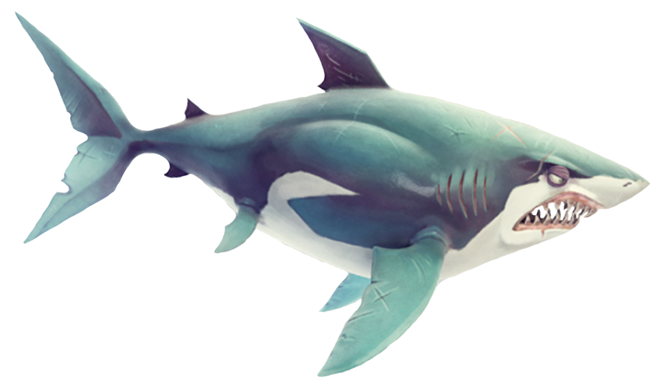 Hungry Shark Great White Shark Png By Tfprime1114 On Deviantart Polish your personal project or design with these shark transparent png images, make it even more personalized and more attractive. hungry shark great white shark png by