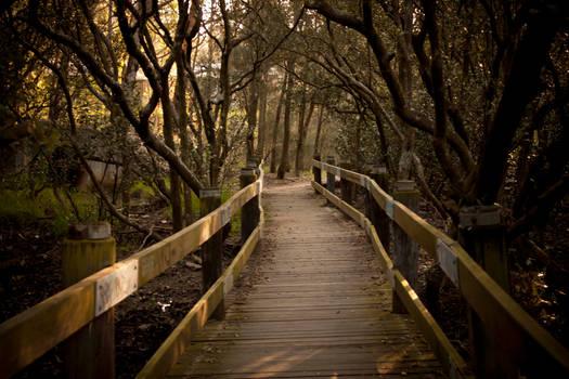 Follow the same Path