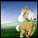 In the grassy Fields:request