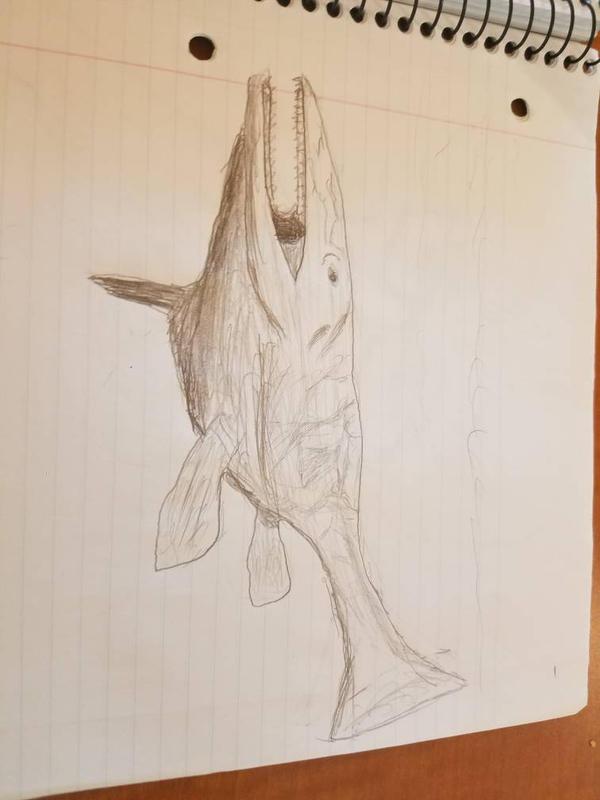 tylosaurus sketch by lachocomoose