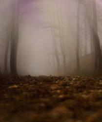 blur_wood by liquid-dimension
