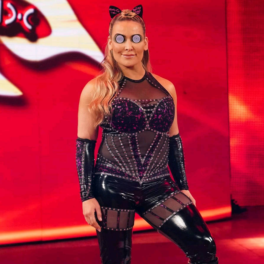 14 Actual Facts You Did Not Know About Natalya | Fan World
