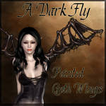 A Dark Fly by Alicelefay