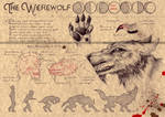 THE WEREWOLF (1)