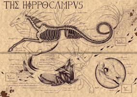 THE HIPPOCAMPUS (2) by Zellgarm