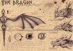 THE WESTERN DRAGON (1)