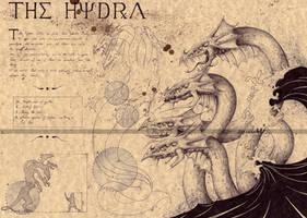 Hydra by Zellgarm