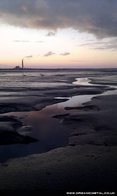 Riverside Mud Flats