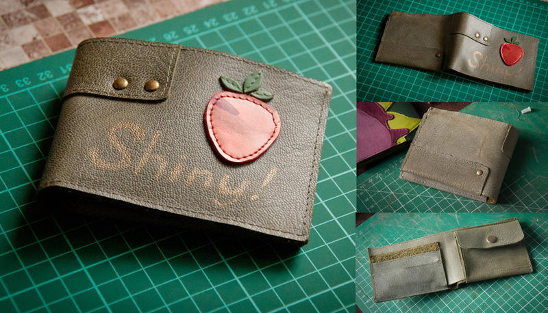 Shiny wallet by eiphen