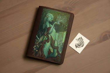 Yet another one DragonAge passport cover