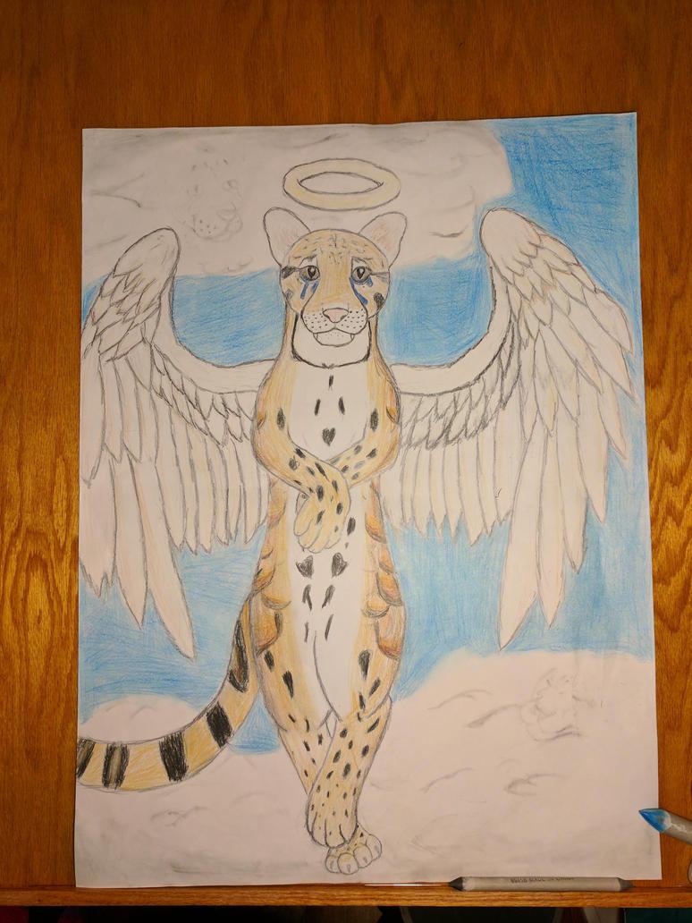 Heaven the Clouded Leopard by KrazyKitty44