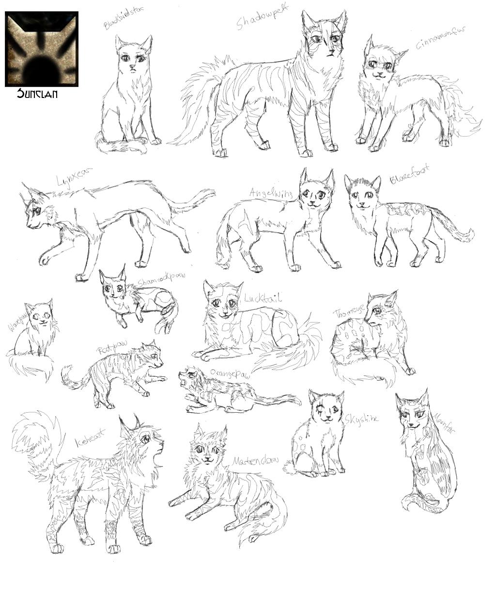 Anime Katze Zeichnen Hostindia Club