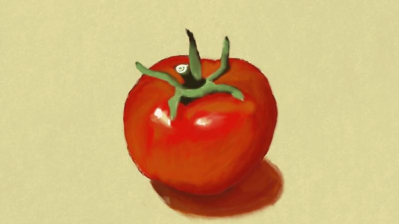 Tomato by Yashooo