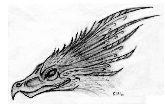 Phoenix head by Abydell on DeviantArt
