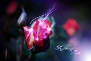 Mystic Rose by HorizoNpl