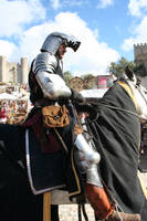 Man - medieval knight by Stock-gallery