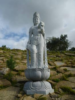 Buddha Eden 11