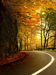 Wonderful Autumn by Neitheea