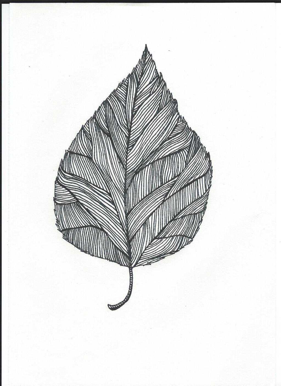 Line Drawing Leaf : Line art leaf by awesomness on deviantart