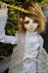 Lion Prince by hmuraki