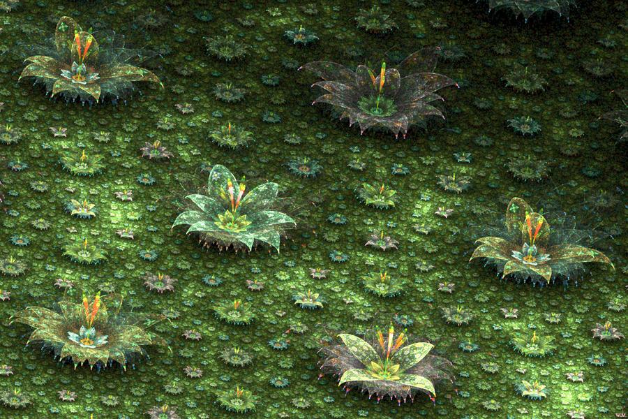 Epiphytes by WolfgangMesmer