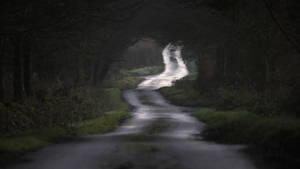 Quiet lane by RoB-FranKsDad