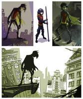 Robin1 by Larushus
