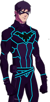 Tron Young Justice Nightwing