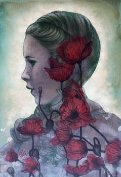 Poppies of Oz