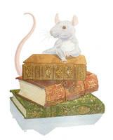 Rattus by Longhair