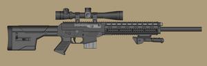 Sig 556 DMR