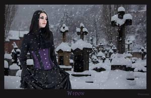 Widow by Drucila222