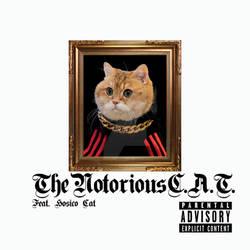 NotoriousCAT1