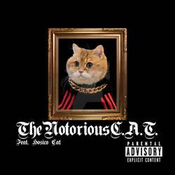 NotoriousCAT2