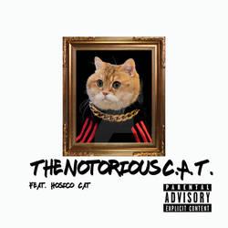 NotoriousCAT3