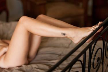 Torrid's Legs by PerryGallagher
