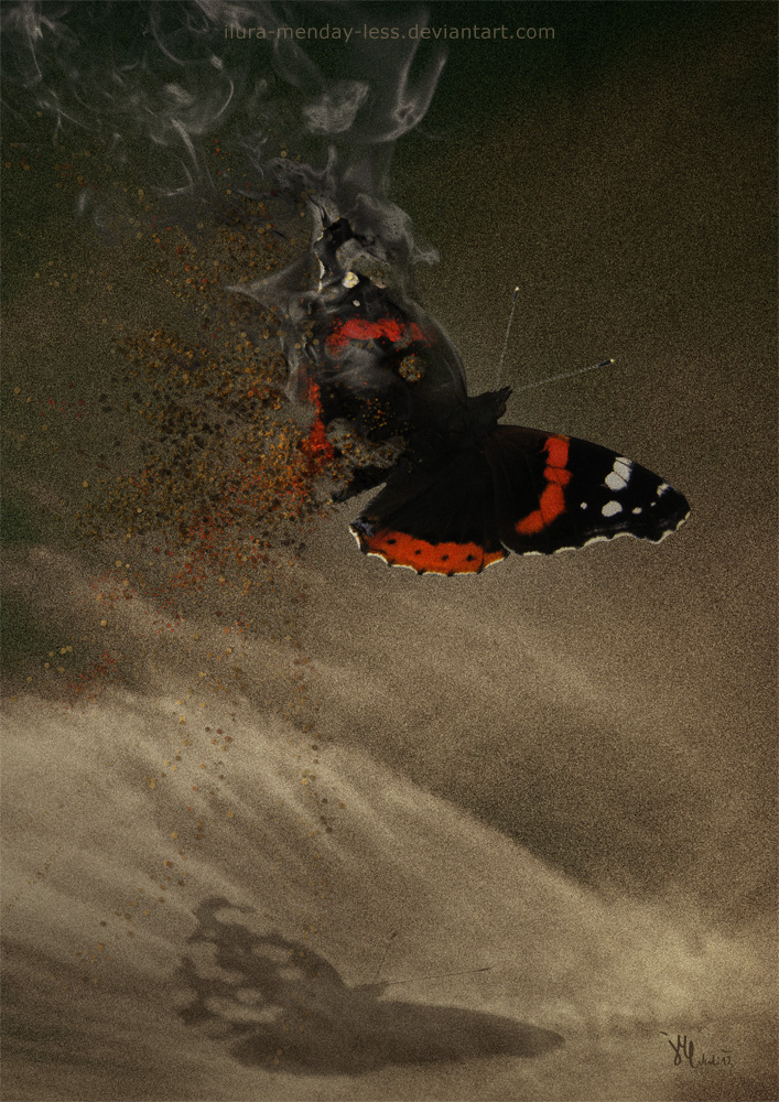 vanishing in flight by ilura-menday-less