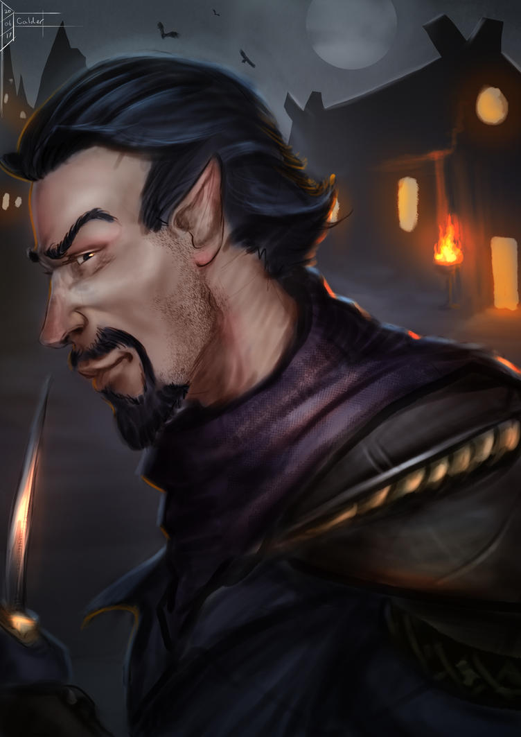 List Of Synonyms And Antonyms Of The Word Half Elf Portrait