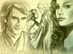 Anakin and padme collage