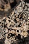 Lava-Rock texture 02